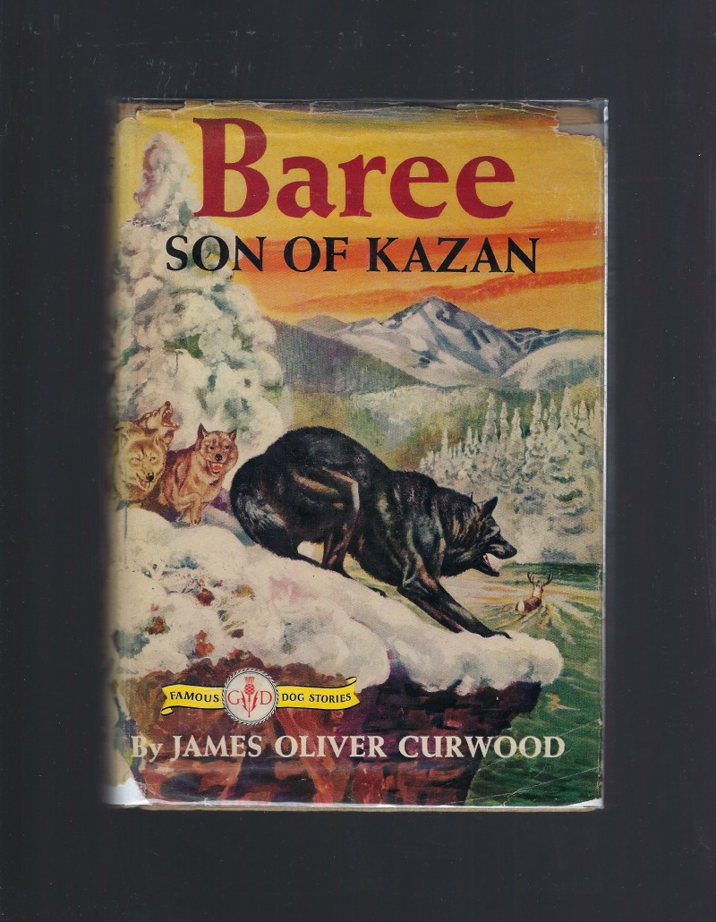 Image for Baree Son of Kazan (Famous Dog Stories) HB/DJ