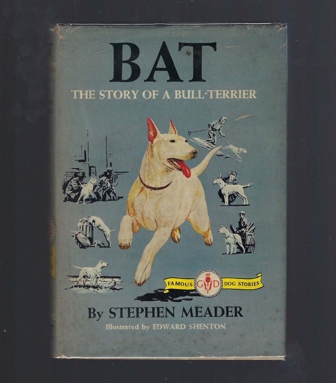 Image for BAT The Story of a Bull Terrier Famous Dog Stories Stephen W. Meader HB/DJ