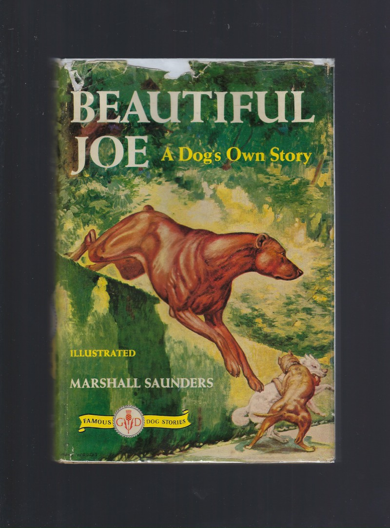 Image for Beautiful Joe A Dog's Own Story (Famous Dog Stories) HB/DJ