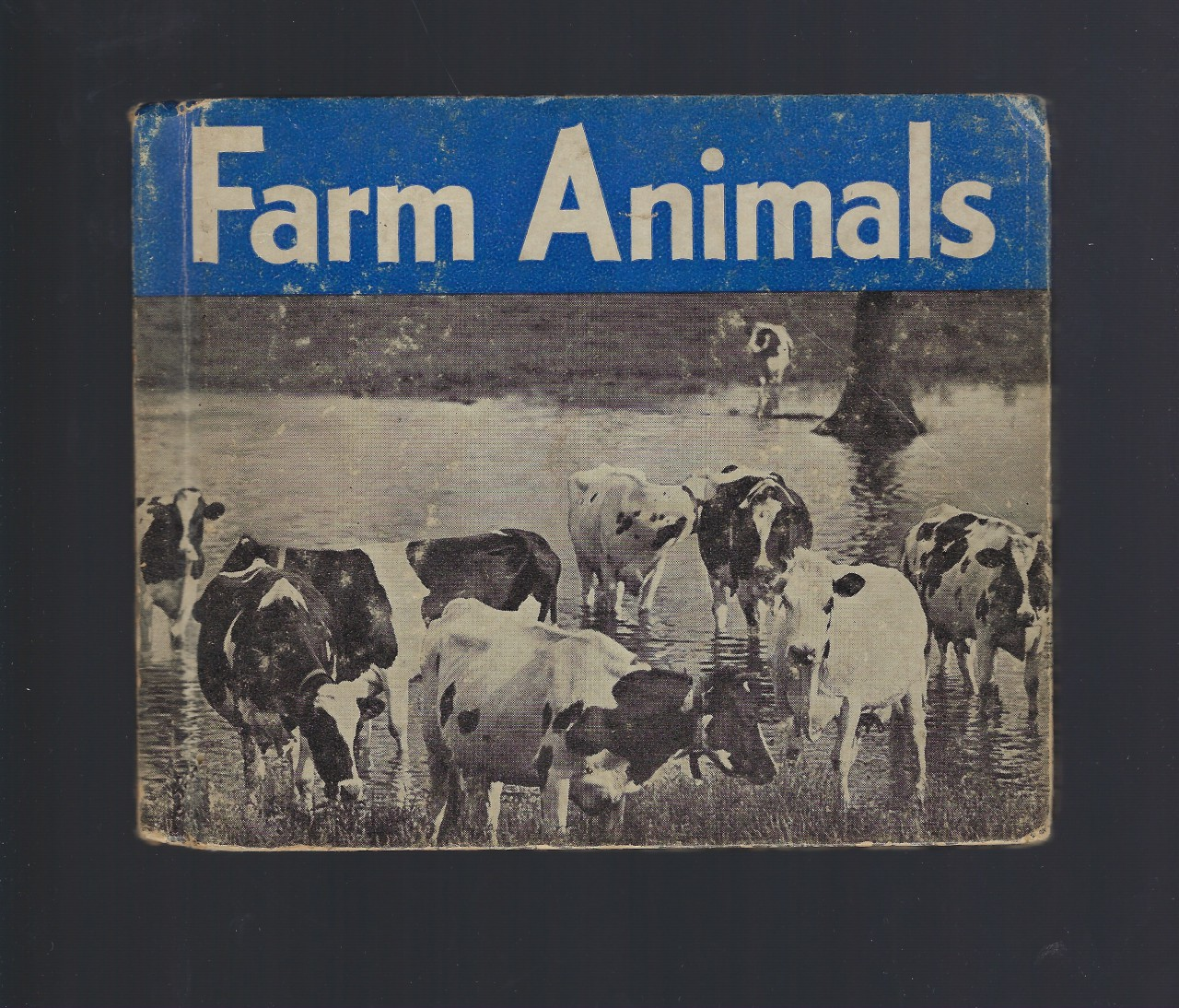 Image for Farm Animals-Photographs and Descriptions of 100 Most Important Farm Animals